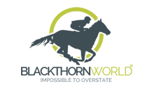 Blackthorn World
